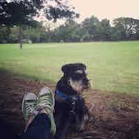 Gunther sits in the park