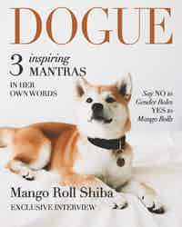 A comp of a magazine cover that features a large shot of Mango